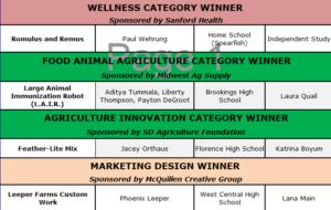 2019 BIG Idea Special Category Winners