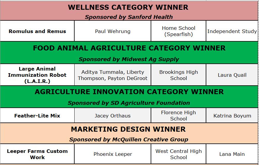 2019 BIG Idea Specialty Category Winners